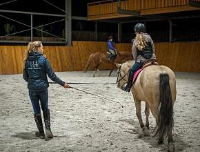 10-konie-akademia-kuraszkow.jpg