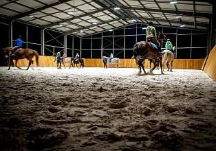 8-konie-akademia-kuraszkow.jpg