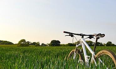 bicycle-1835844_960_720.jpg