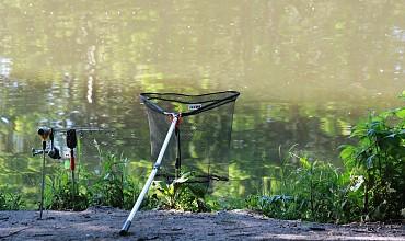 fishing-484616_960_720.jpg